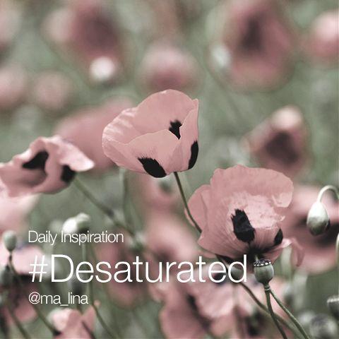#desaturated desaturated