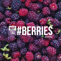 dailytag berries