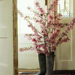 rainboots pink flowers