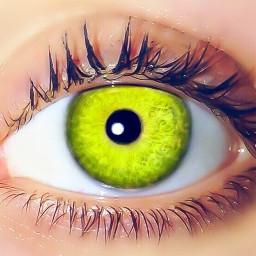 limegreen eye bright simple