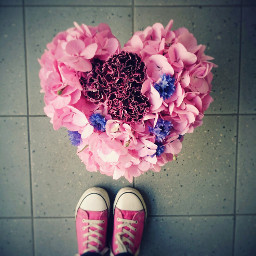 flower colorful love