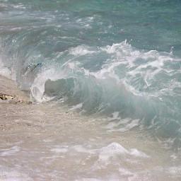 wapwave
