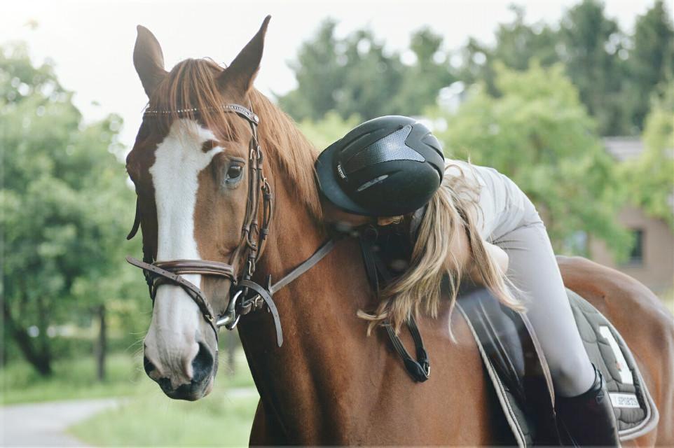 #horse #girl #reiten #nature #love #friendship #vintage #photography #petsandanimals