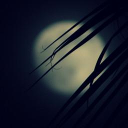 photography moon