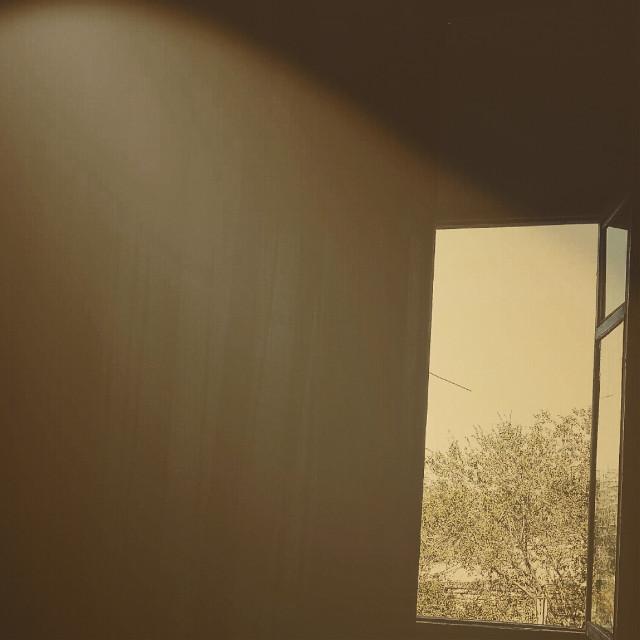 #morning #sun #light #august #sunday #window