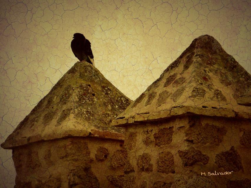 #twilight #summer #castle #paper