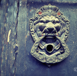 doorhandletheball doorhandle weird blackandwhite photography