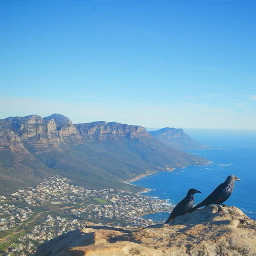 nature photography travel spring southafrica