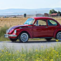 cars hdr photography summer vw turkey eski red flower