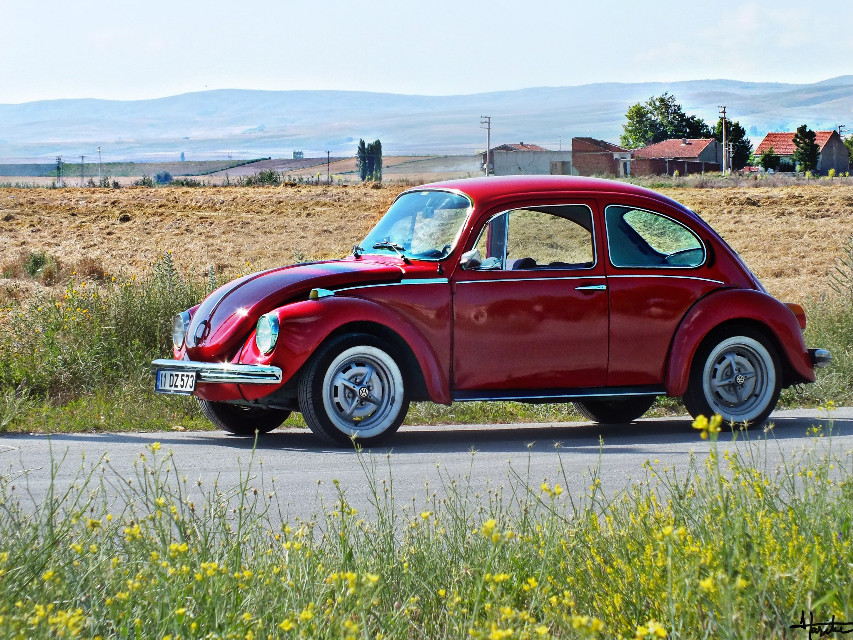 #cars #hdr #photography #summer  #vw #turkey #eskişehir #red #flower  @pa