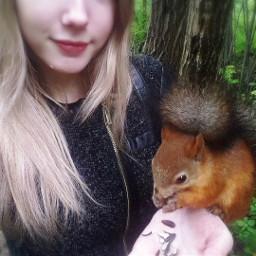 squirrel forest russia perm белка