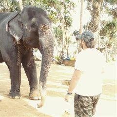 vacation adventure best life srilanka