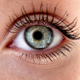 beauty woman eye canon green