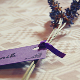 table decoration wedding party photography
