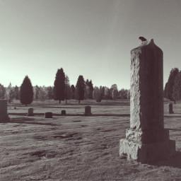cemetery perspective interesting art blackandwhite