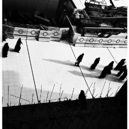 shadows blackandwhitehicon blackonwhite blackandwhite makkah